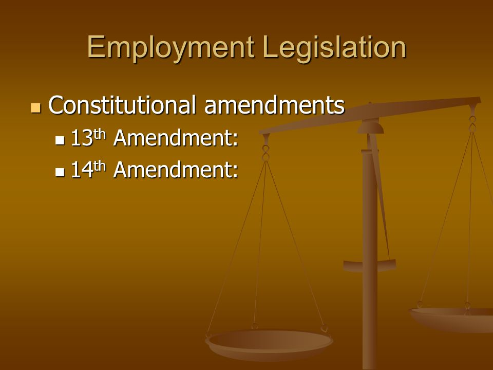 Employment Legislation Constitutional amendments Constitutional amendments 13 th Amendment: 13 th Amendment: 14 th Amendment: 14 th Amendment: