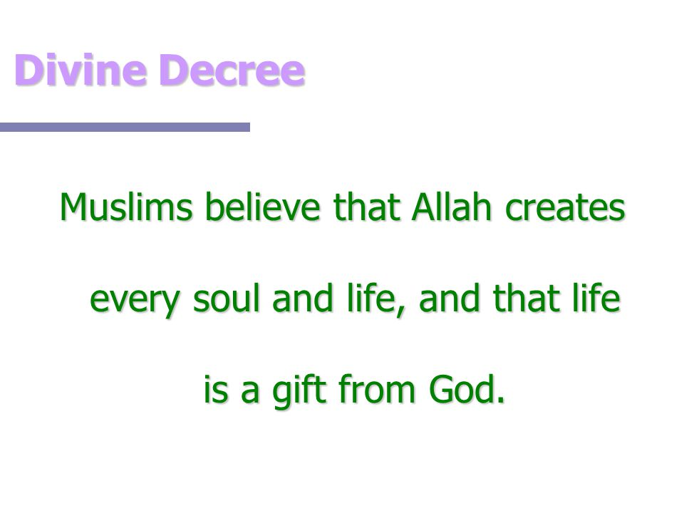 Divine Decree Muslims believe that Allah creates every soul and life, and that life is a gift from God.