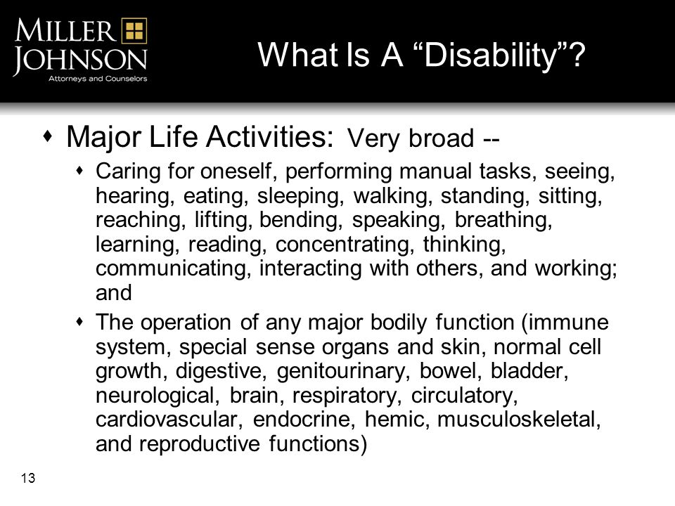 13 What Is A Disability .