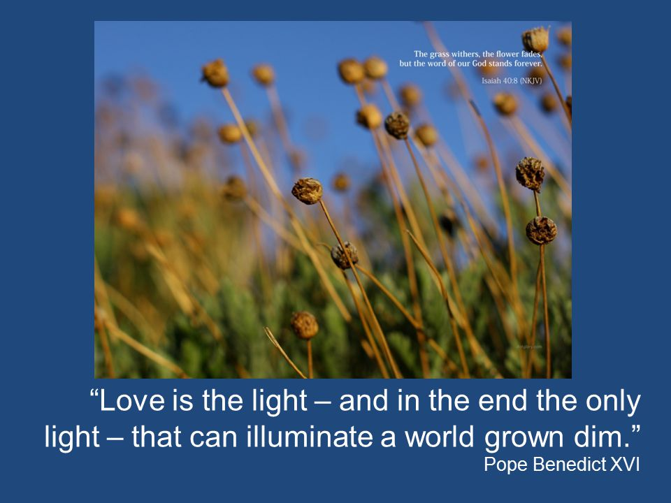 Love is the light – and in the end the only light – that can illuminate a world grown dim. Pope Benedict XVI