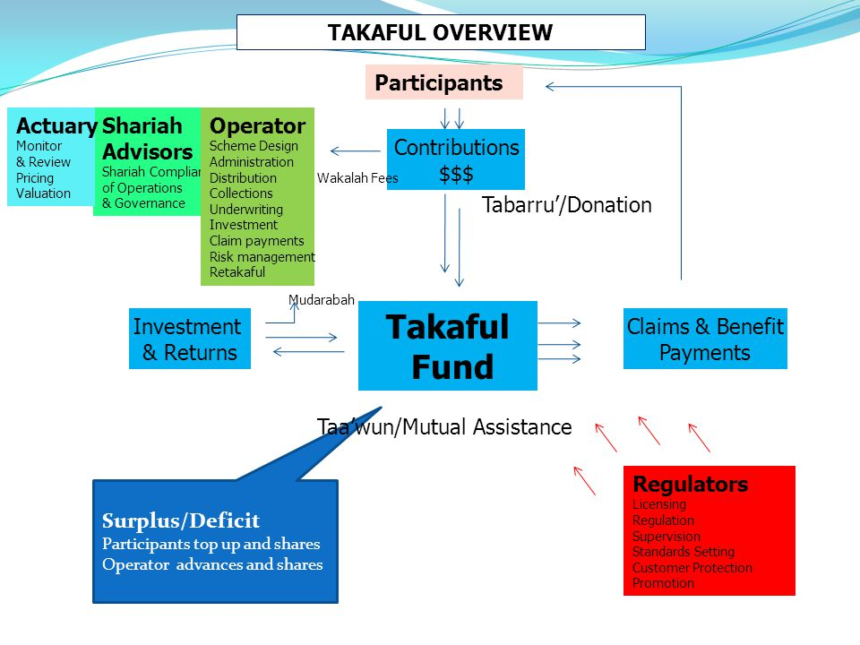 (d) Principles of Takaful :  The takaful concept is based on the following principles : (i) Mutual Responsibility; (ii) Mutual Help and Cooperation; (iii) Mutual Protection; 43