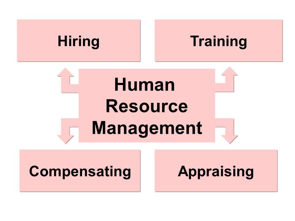 Human Resource Management Appraising Training Compensating Hiring