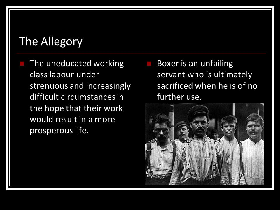 The Allegory The uneducated working class labour under strenuous and increasingly difficult circumstances in the hope that their work would result in