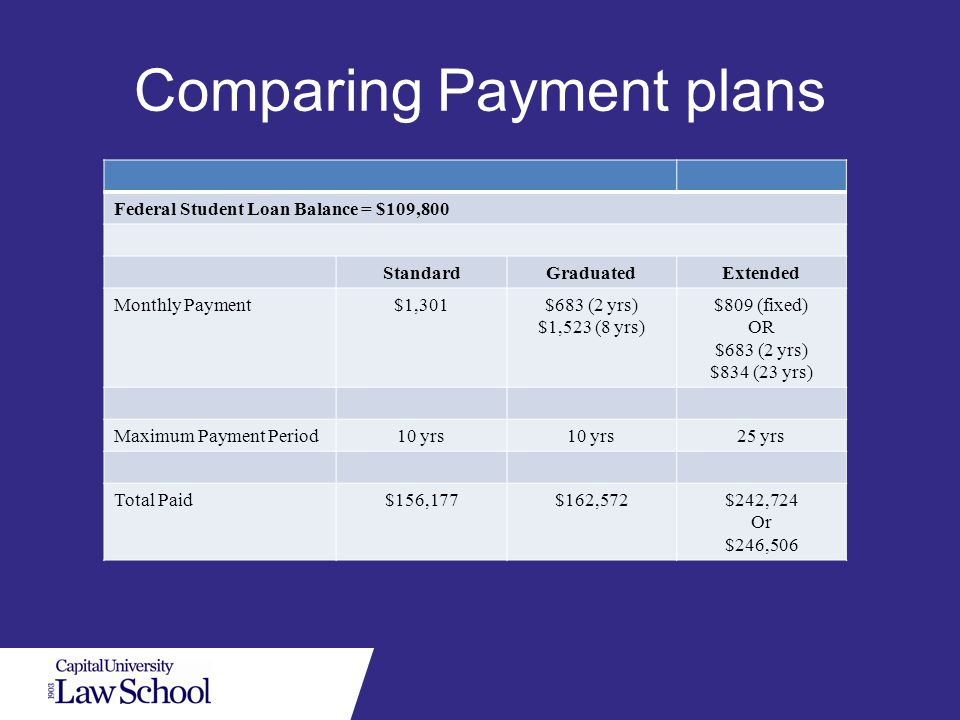 Income-based repayment option