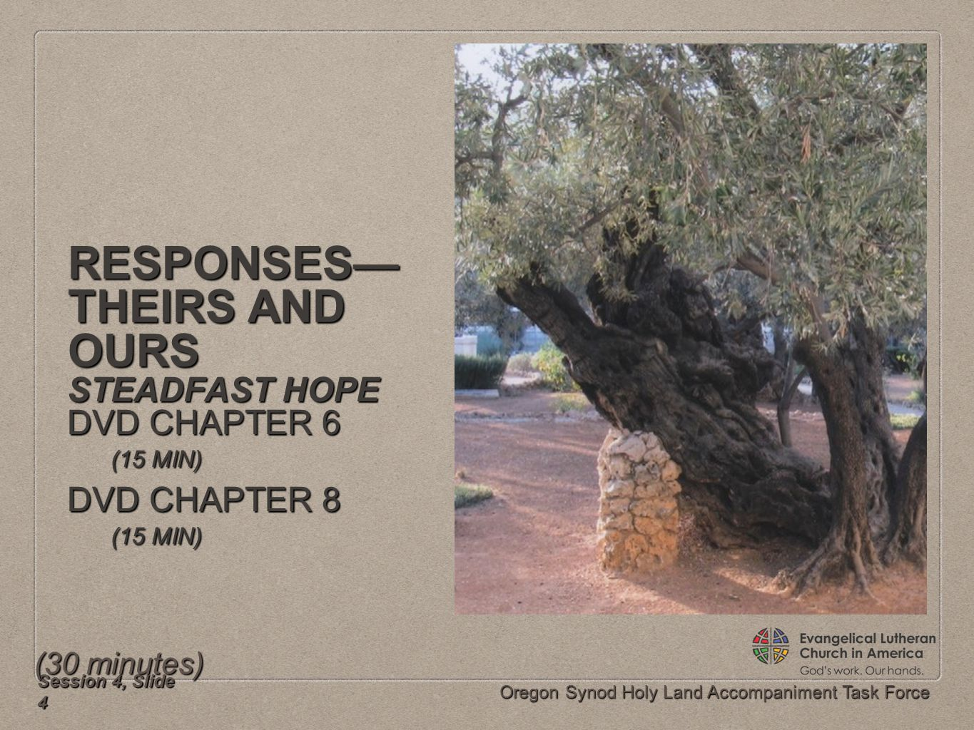 Oregon Synod Holy Land Accompaniment Task Force RESPONSES— THEIRS AND OURS STEADFAST HOPE DVD CHAPTER 6 (15 MIN) DVD CHAPTER 8 (15 MIN) Session 4, Sli