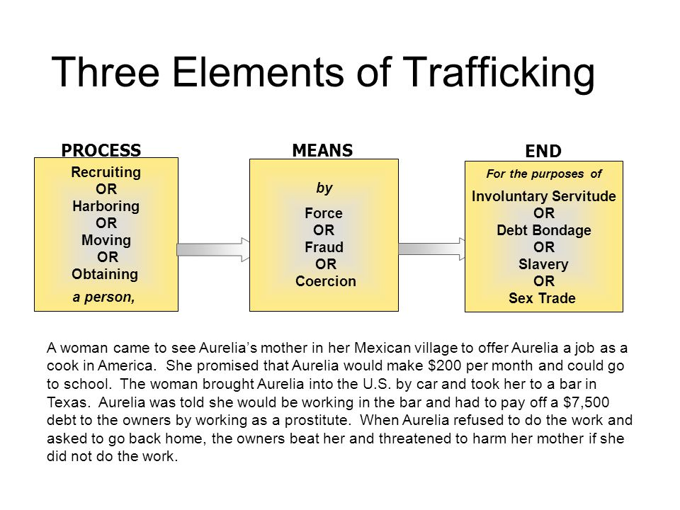 Three Elements of Trafficking Recruiting OR Harboring OR Moving OR Obtaining a person, 1 PROCESS by Force OR Fraud OR Coercion 2 MEANS For the purposes of Involuntary Servitude OR Debt Bondage OR Slavery OR Sex Trade 3 END A woman came to see Aurelia's mother in her Mexican village to offer Aurelia a job as a cook in America.