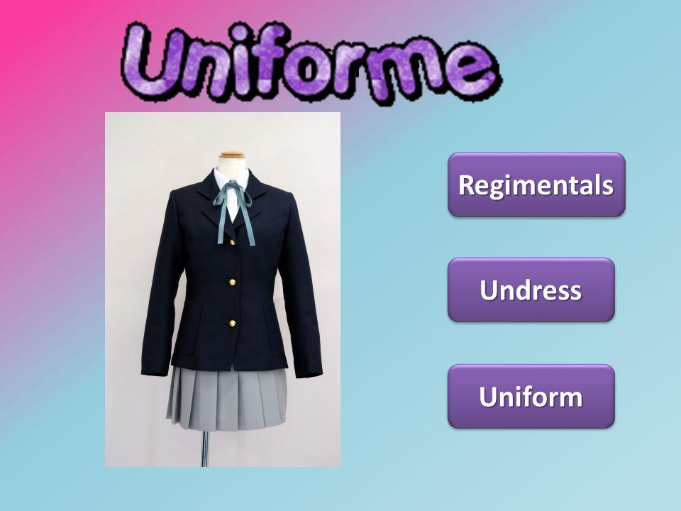 Uniforme Regimentals Undress Uniform