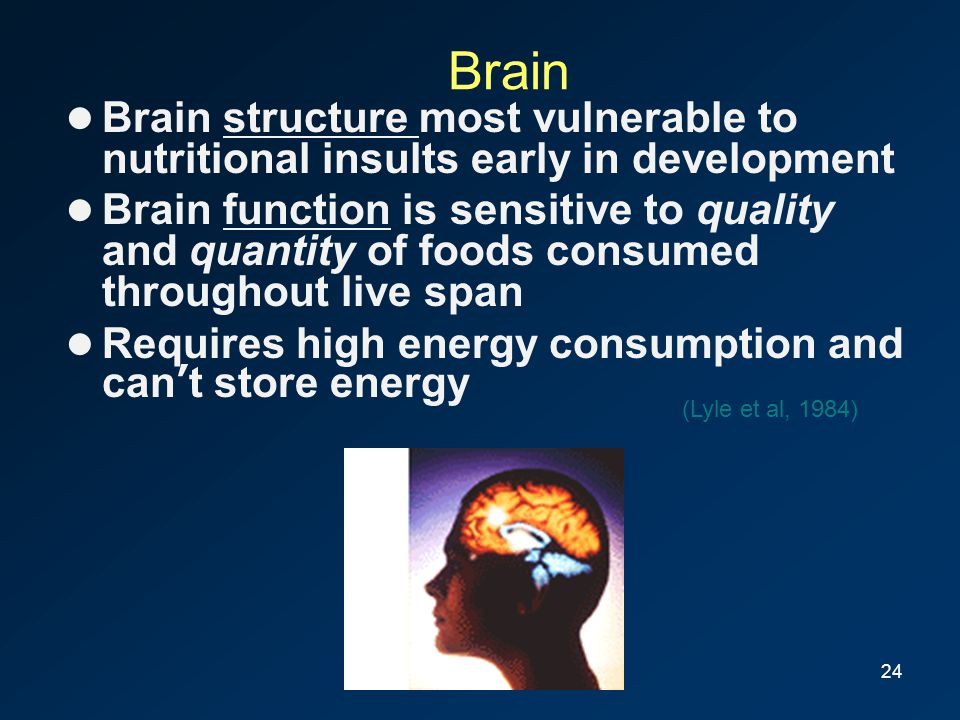 24 Brain Brain structure most vulnerable to nutritional insults early in development Brain function is sensitive to quality and quantity of foods cons