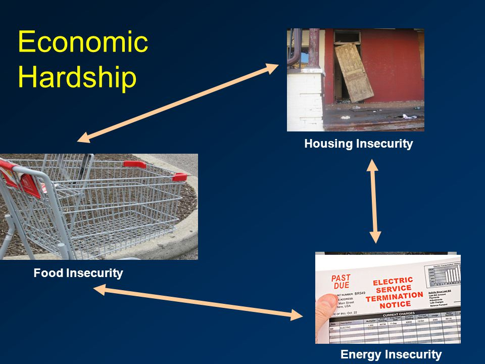 Economic Hardship Food Insecurity Housing Insecurity Energy Insecurity