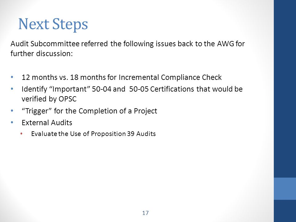 Audit Subcommittee referred the following issues back to the AWG for further discussion: 12 months vs.