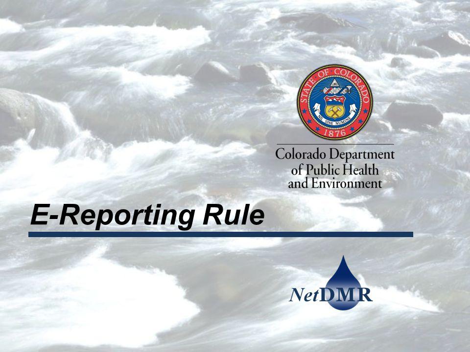 E-Reporting Rule