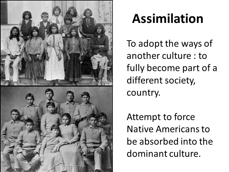 Assimilation To adopt the ways of another culture : to fully become part of a different society, country.