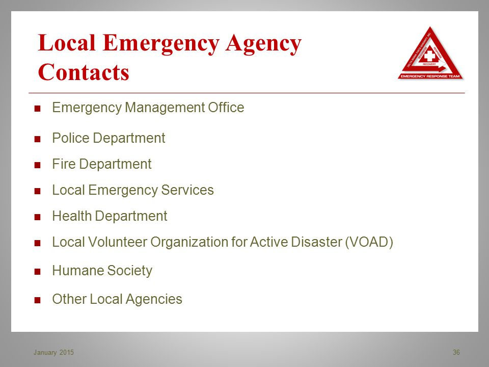Emergency Management Office Police Department Fire Department Local Emergency Services Health Department Local Volunteer Organization for Active Disas