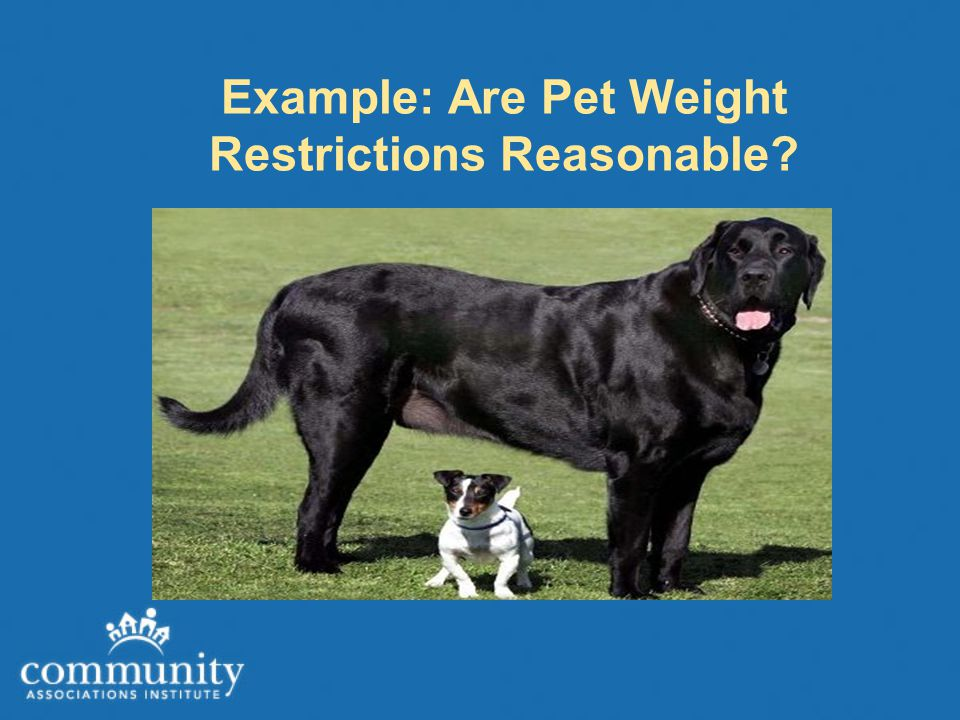 Example: Are Pet Weight Restrictions Reasonable?