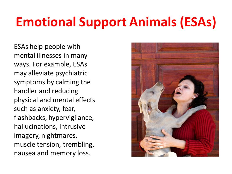 ESAs help people with mental illnesses in many ways.