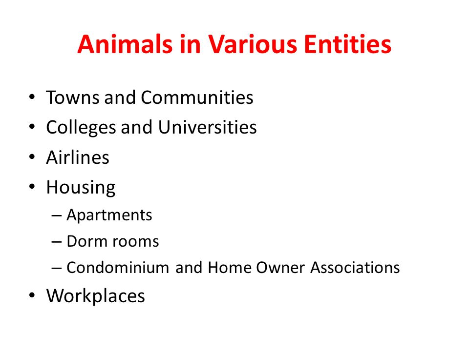 Animals in Various Entities Towns and Communities Colleges and Universities Airlines Housing – Apartments – Dorm rooms – Condominium and Home Owner Associations Workplaces