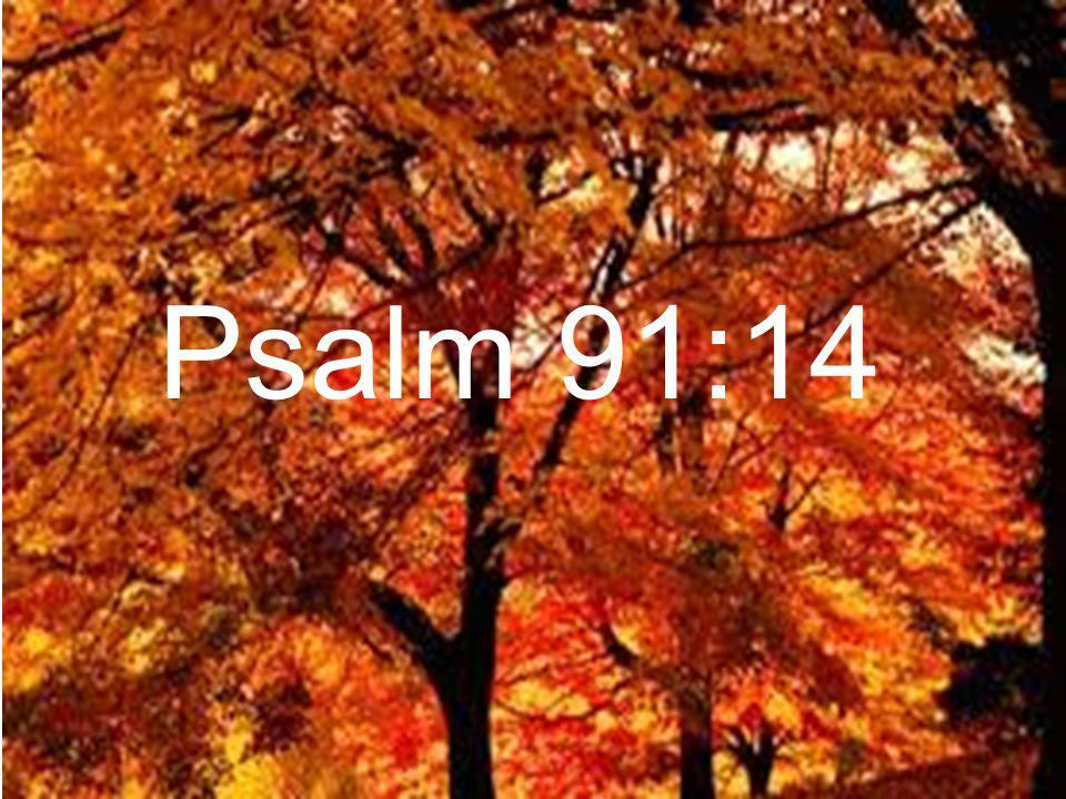 Psalm 91:14
