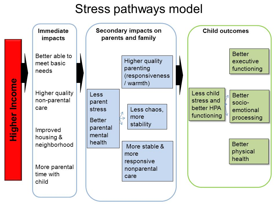 Stress pathways model Higher Income Immediate impacts Better able to meet basic needs Higher quality non-parental care Improved housing & neighborhood More parental time with child Secondary impacts on parents and family Less parent stress Better parental mental health Child outcomes Higher quality parenting (responsiveness / warmth) Less chaos, more stability More stable & more responsive nonparental care Less child stress and better HPA functioning Better executive functioning Better socio- emotional processing Better physical health