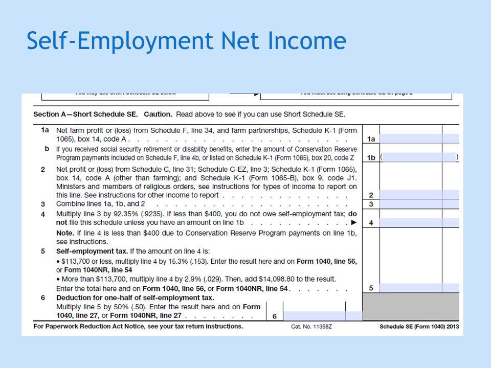Self-Employment Net Income