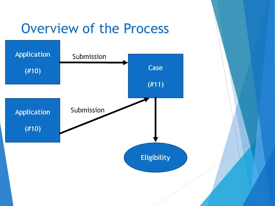 Overview of the Process Application (#10) Case (#11) Submission Application (#10) Submission Eligibility