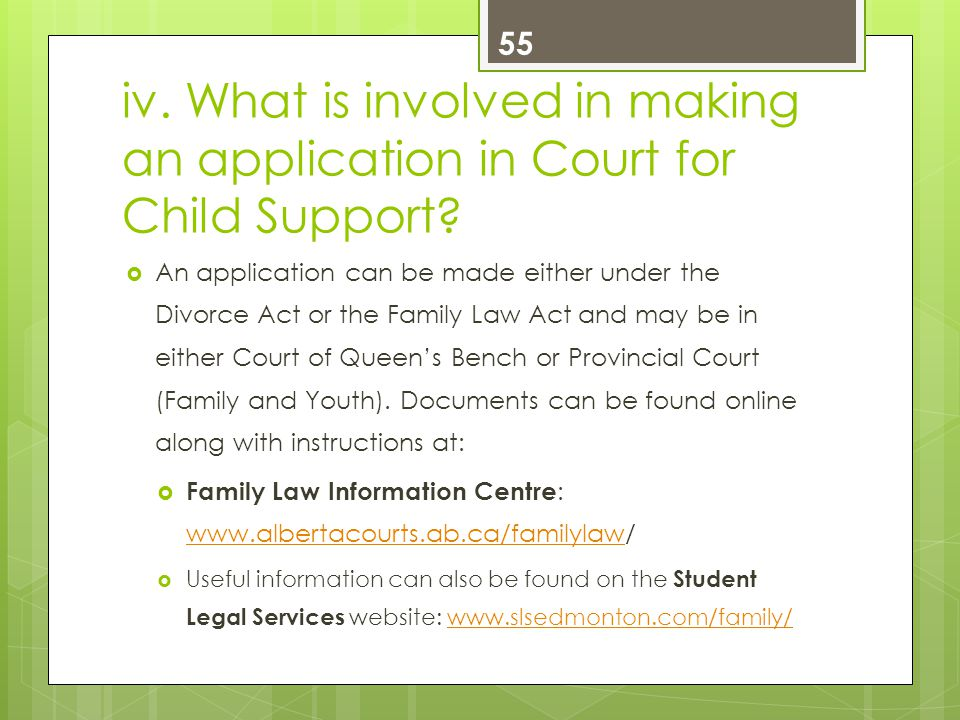 iv. What is involved in making an application in Court for Child Support.