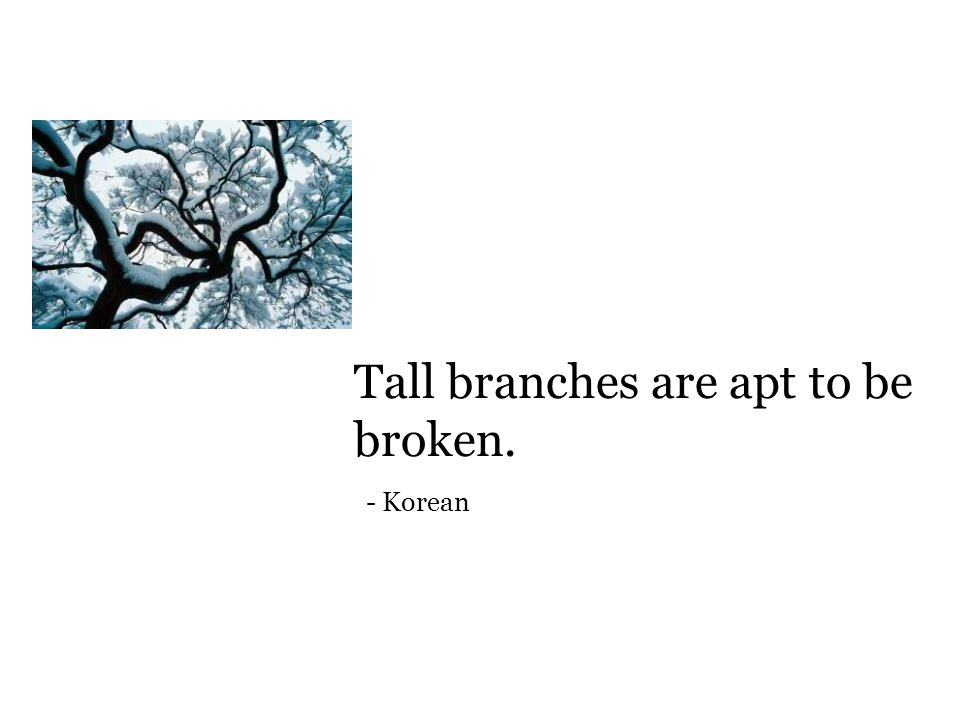 Tall branches are apt to be broken. - Korean