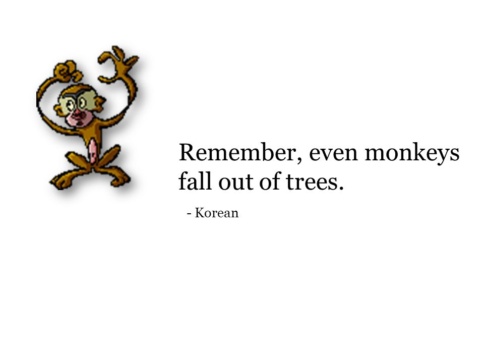 Remember, even monkeys fall out of trees. - Korean