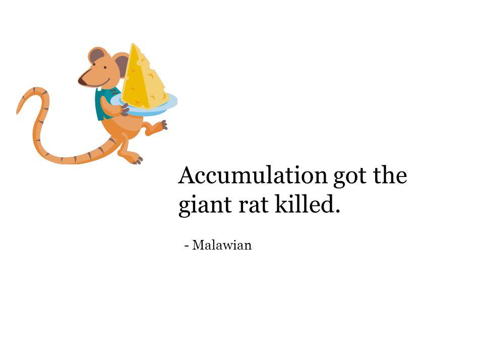 Accumulation got the giant rat killed. - Malawian