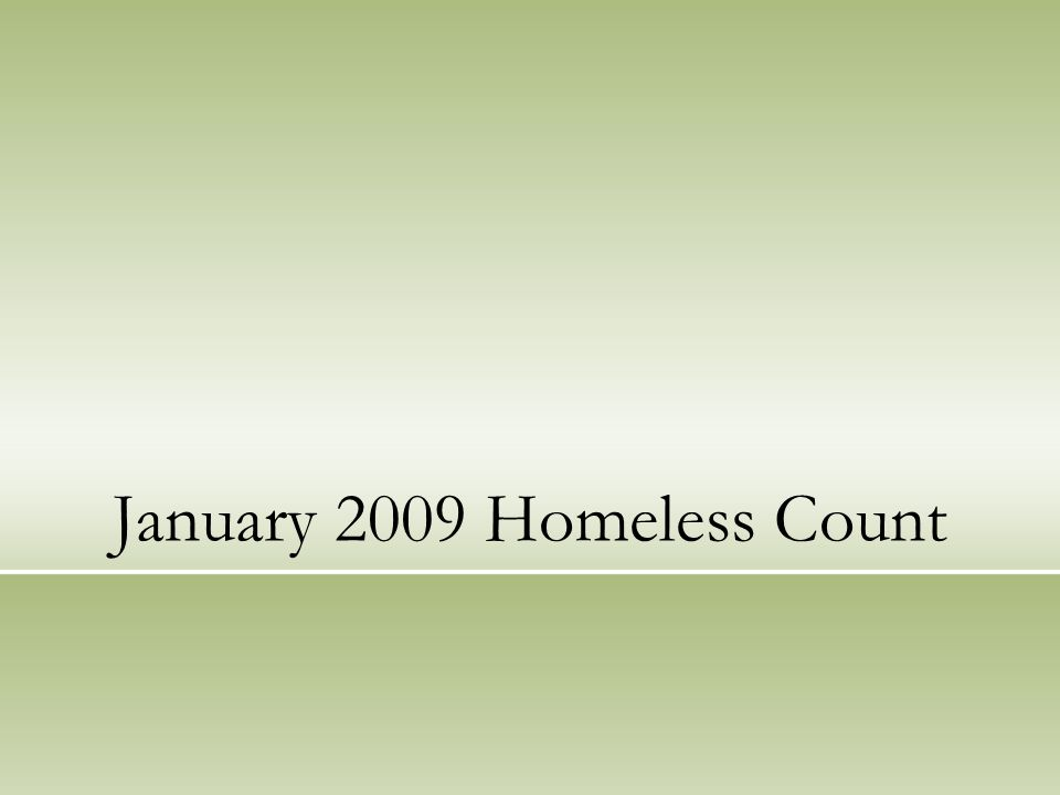 January 2009 Homeless Count
