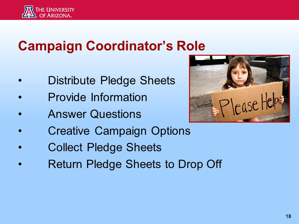Campaign Coordinator's Role Distribute Pledge Sheets Provide Information Answer Questions Creative Campaign Options Collect Pledge Sheets Return Pledge Sheets to Drop Off 18