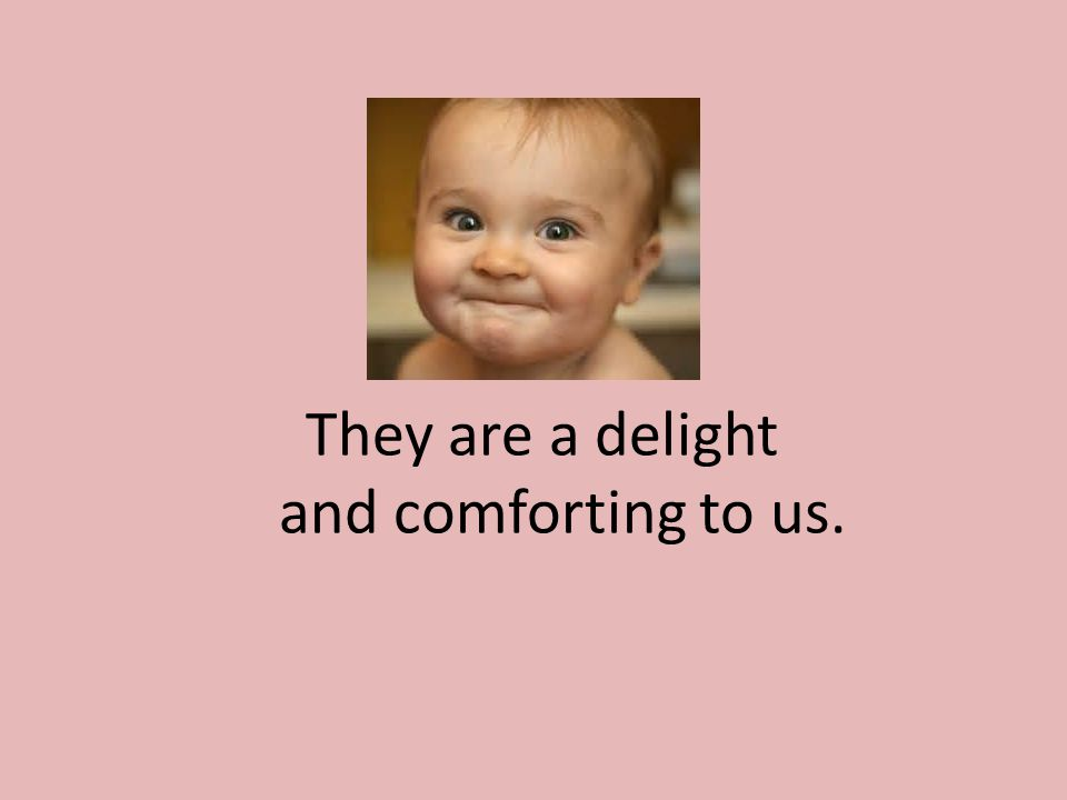 They are a delight and comforting to us.