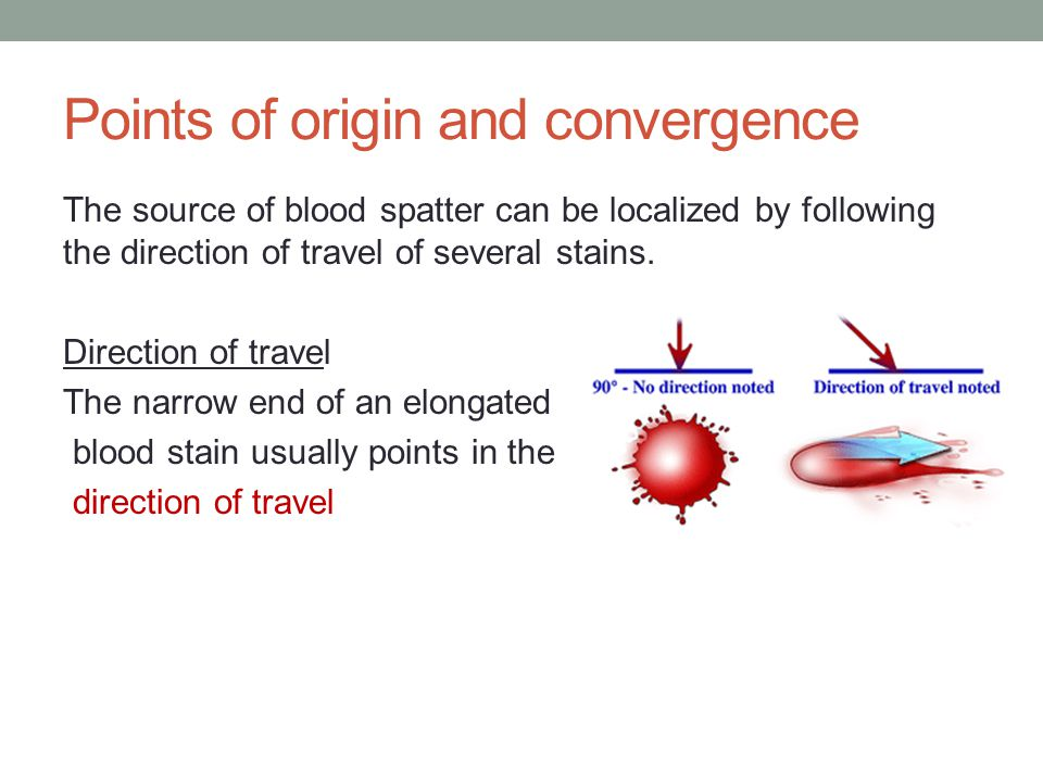 Points of origin and convergence The source of blood spatter can be localized by following the direction of travel of several stains.