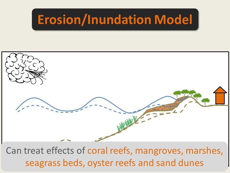 Can treat effects of coral reefs, mangroves, marshes, seagrass beds, oyster reefs and sand dunes