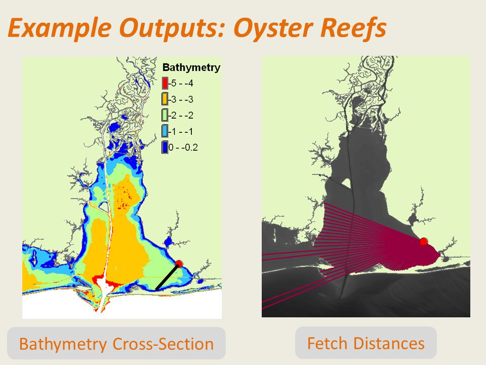 Example Outputs: Oyster Reefs Bathymetry Cross-Section Fetch Distances