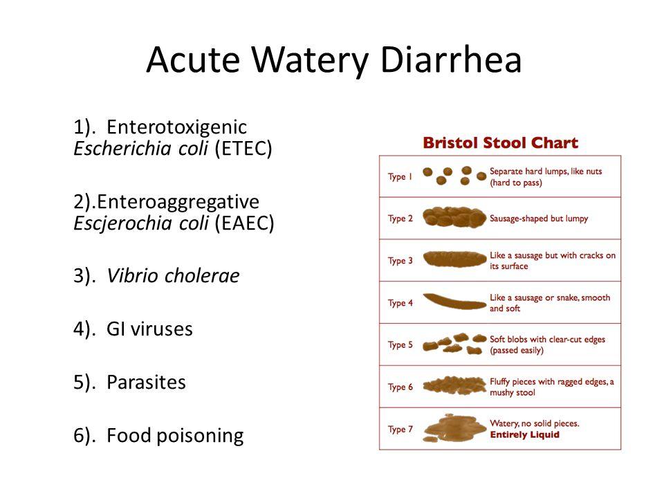 Acute Watery Diarrhea 1).