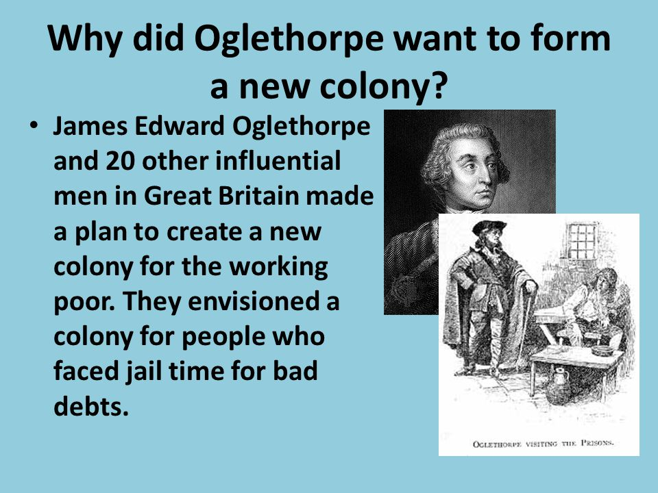 silk, dyes, wine, spices, and semi- tropical fruit What products did James Oglethorpe promise to send back to England?