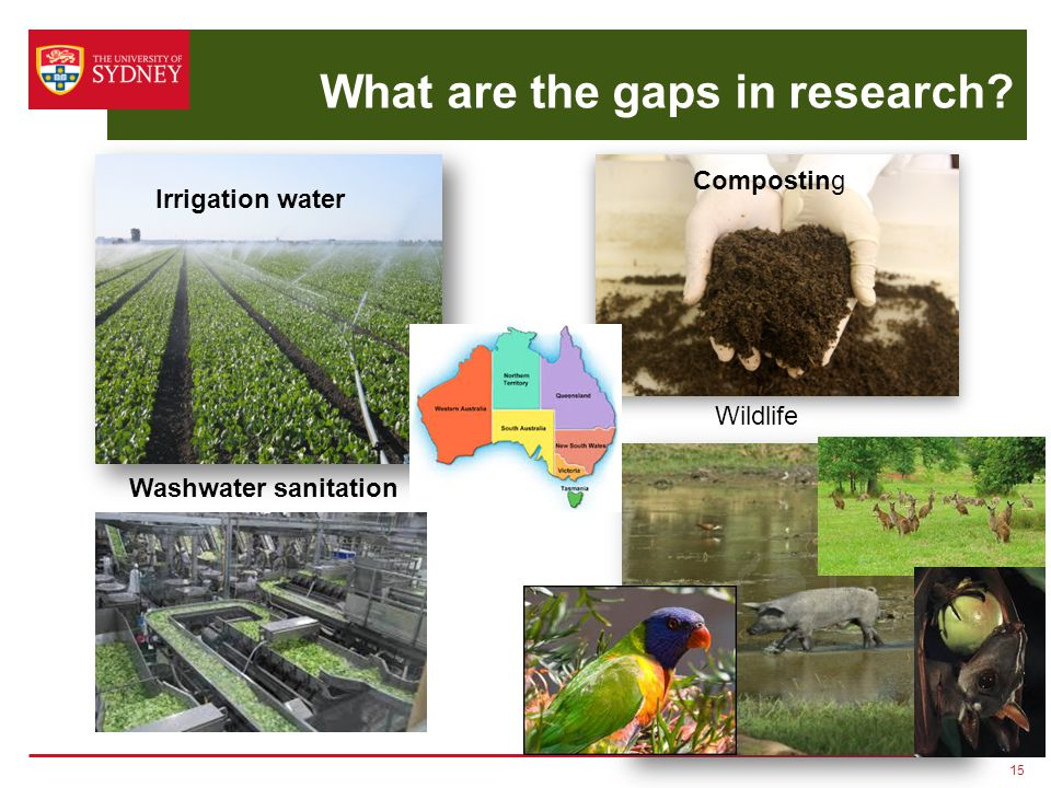 What are the gaps in research? 15 Irrigation water Composting Wildlife Washwater sanitation