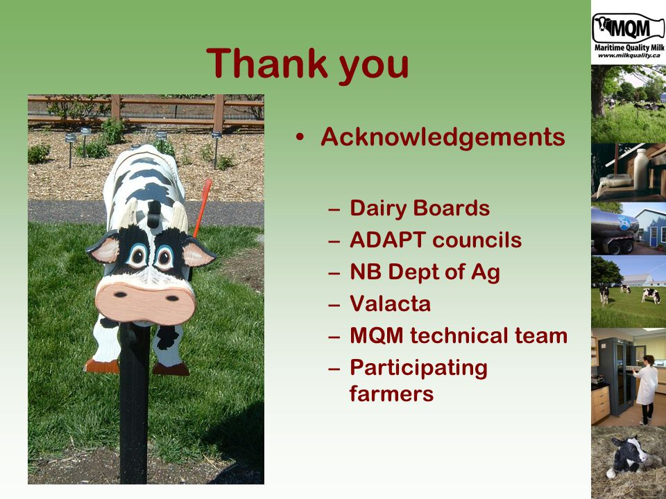 Thank you Acknowledgements –Dairy Boards –ADAPT councils –NB Dept of Ag –Valacta –MQM technical team –Participating farmers