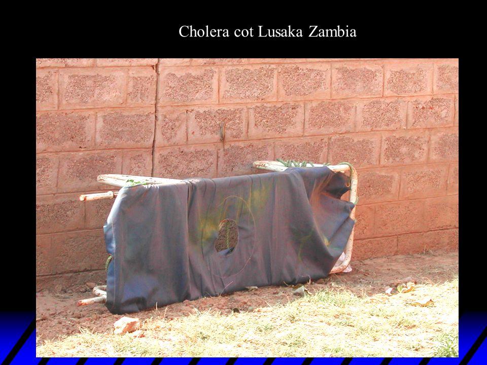 Cholera cot Lusaka Zambia