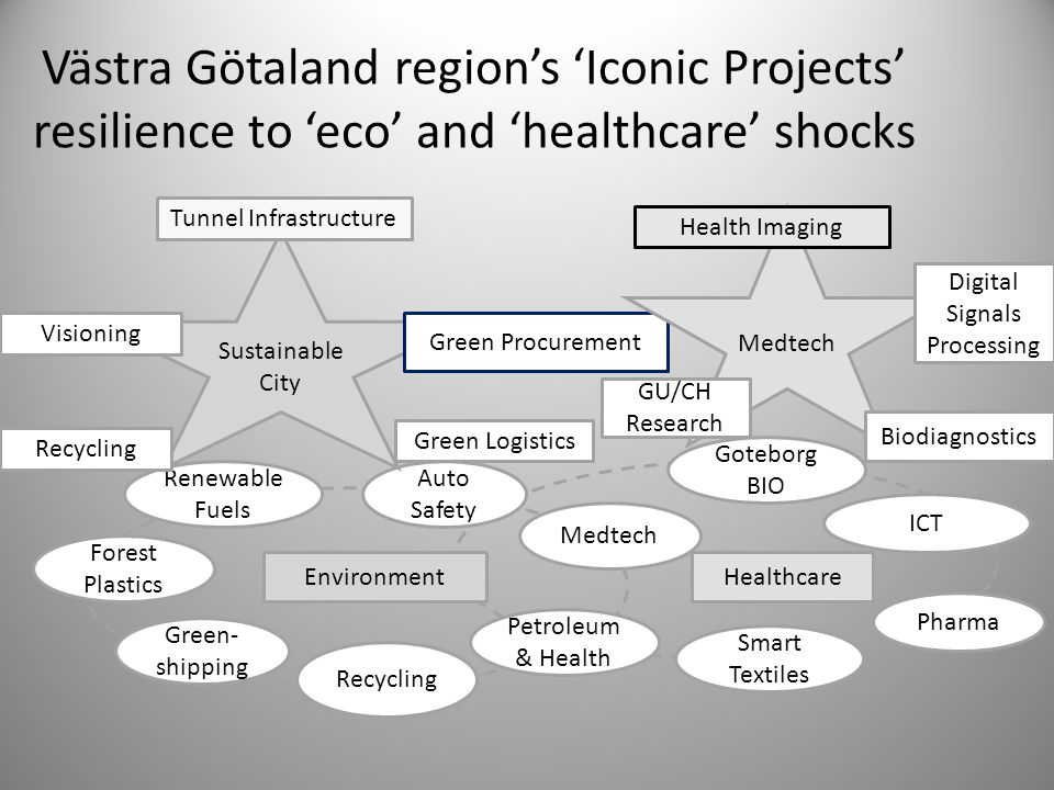 Västra Götaland region's 'Iconic Projects' resilience to 'eco' and 'healthcare' shocks Renewable Fuels Forest Plastics Auto Safety Medtech Green- ship