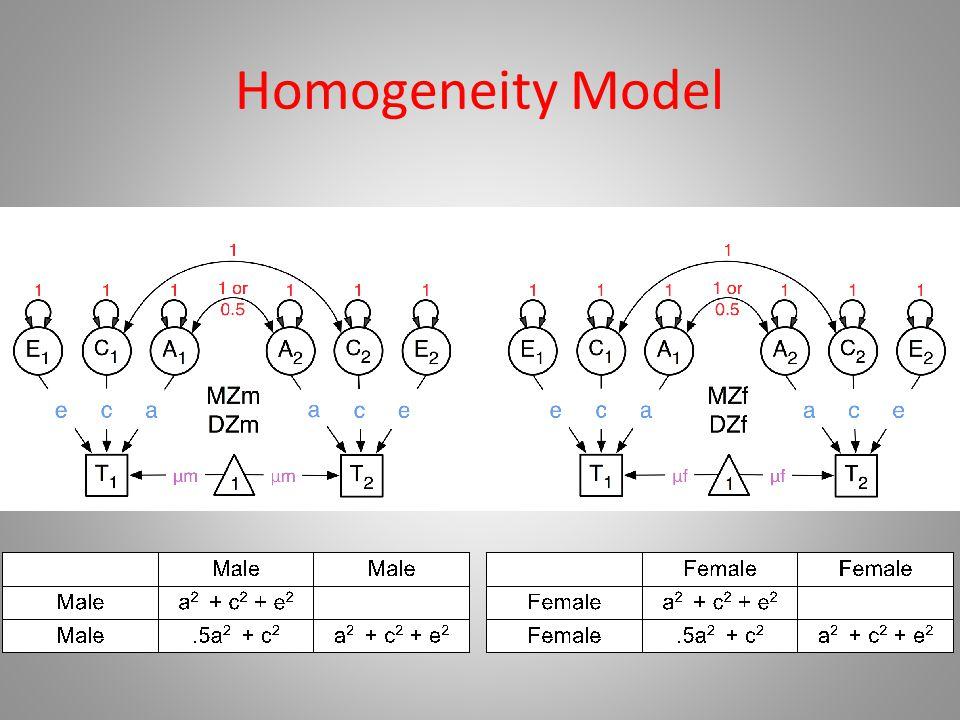 Homogeneity Model