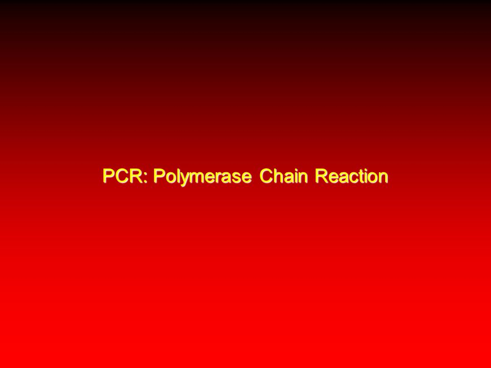 PCR: Polymerase Chain Reaction