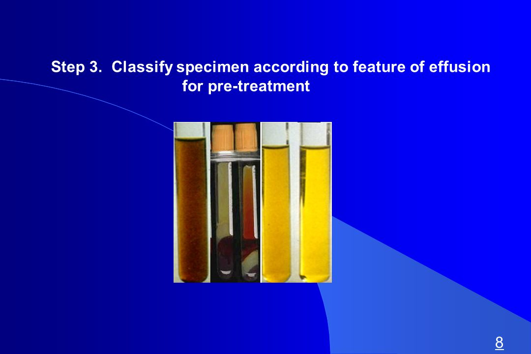 Step 3. Classify specimen according to feature of effusion for pre-treatment 8