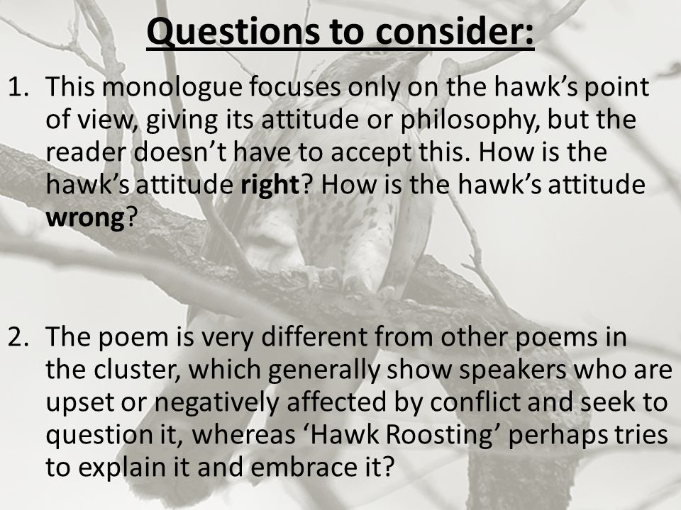 Questions to consider: 1.This monologue focuses only on the hawk's point of view, giving its attitude or philosophy, but the reader doesn't have to ac