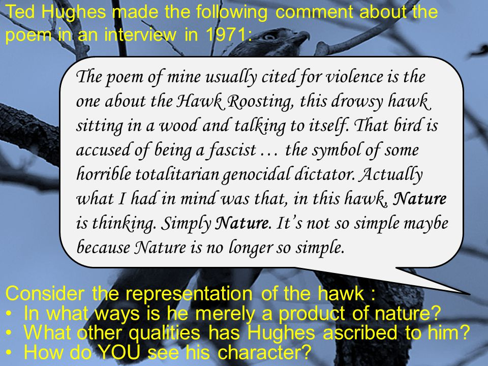 Ted Hughes made the following comment about the poem in an interview in 1971: Consider the representation of the hawk : In what ways is he merely a pr