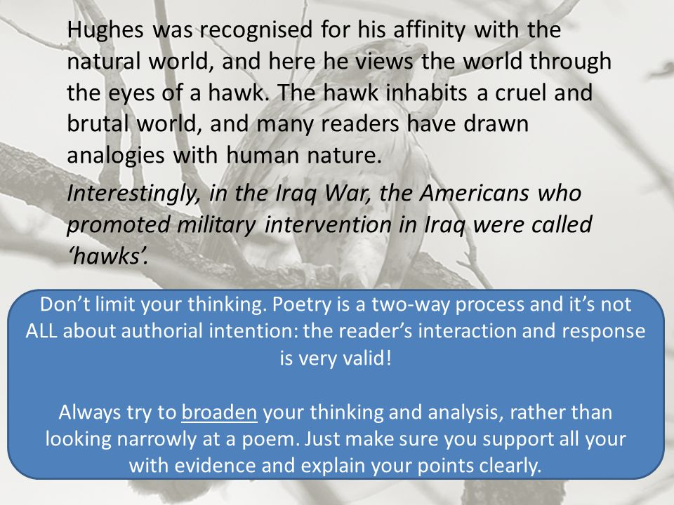 CONFLICT Potentially 2 ways of interpreting this poem in terms of conflict: 1.The hawk represents natural order: the unseeing, unfeeling law of natural selection which states that the strongest will survive – and that this is an inescapable part of human nature as well.