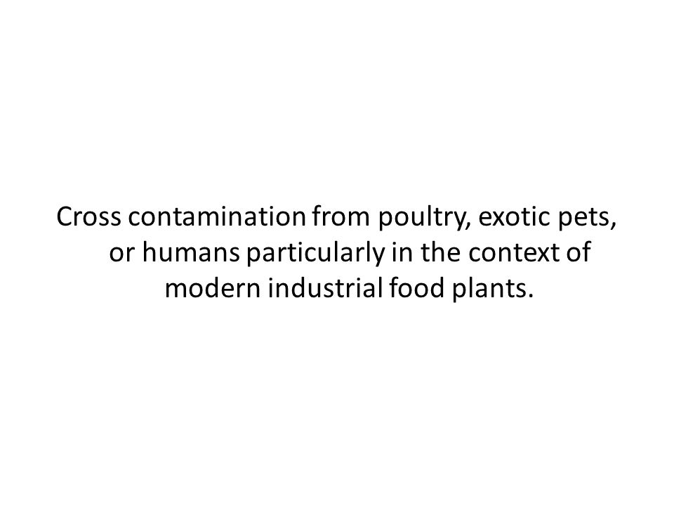 Cross contamination from poultry, exotic pets, or humans particularly in the context of modern industrial food plants.