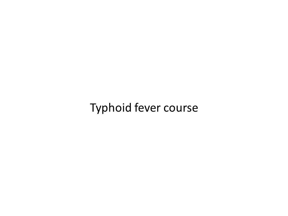Typhoid fever course