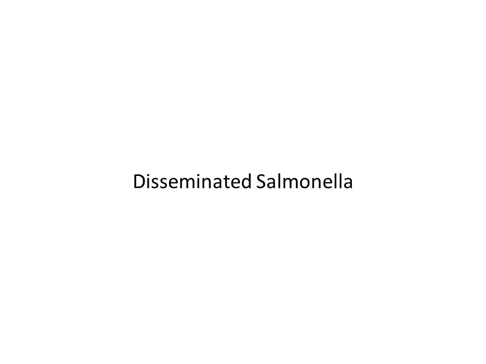 Disseminated Salmonella