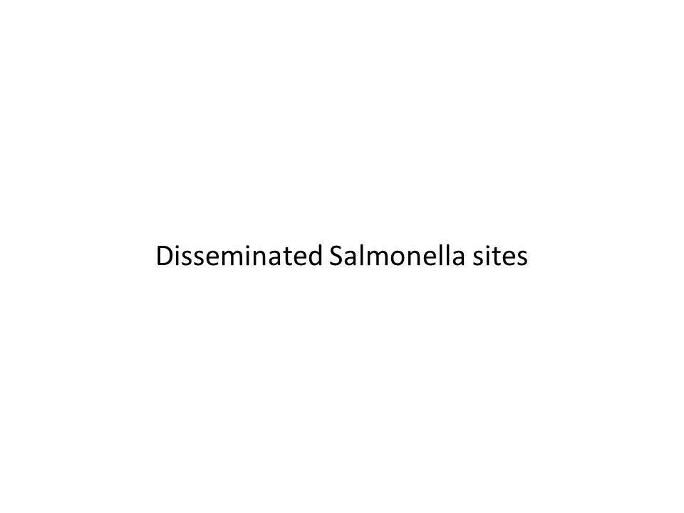 Disseminated Salmonella sites